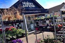 Garden / Staines and Brights Garden department