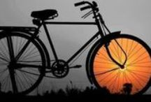 Passion of BICYCLE & VESPA