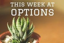 This Week At Options / Here's what's happening at our offices on a weekly basis!