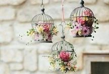 Love for birdcages / I'm so in love with romantic birdcages right now. But instead of birds, there are usually butterflies in my cages. :)