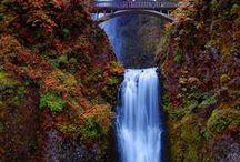 My Oregon / by Loretta Krantz