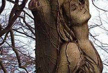 Деревья и образы