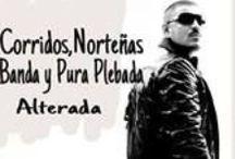 Quotes- Corridos|BAnda|Nortenas