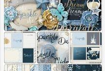 DBD Bundles / Coordinating Digital Collections