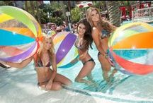 Go Pool at Flamingo Las Vegas / For a sizzling summer scene, Flamingo Go Pool offers guests 21 years or older a high-energy, non-stop pool party with outdoor gaming. Surrounded by a beautiful 15-acre tropical retreat, the larger of the two stunning pools at Flamingo interconnect through lagoons and around a magnificent cascading waterfall. Guests can enjoy the cool shade of the grotto filled with waterfalls or bask in the sun on a poolside lounge chair.