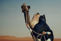 Oman Reizen   Nomad&Villager / Ook zo geïnspireerd door Oman als wij? Hier vind je onze verhalen, inspiratie, beelden en foto's.