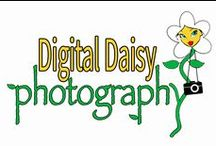 Digital Daisy Photography / Professional, natural photography in Jurien Bay, Western Australia. Digital Daisy specialises in natural light portraits, events, marketing, travel and landscapes. All images are the property of Jennifer Morton.