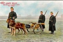 The Great War - World War I - / Imperial Germany Army that fought in WWI