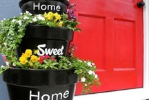 Home Sweet Home / by Darla Williamitis