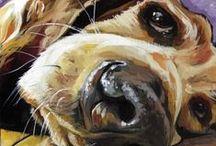 Dogmatic / Dog Portrait inspiration / by Donna Tucker
