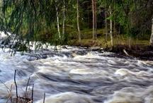 Luontomatkailua Leivonmäellä / Luontomatkailua Leivonmäen kansallispuistossa.