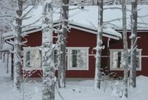 Tähtitalvikki vuokramökki / Tilava, talviasuttava Tähtitalvikki on vuokramökki keskellä Leivonmäen kansallispuistoa.
