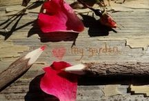 i love my garden... / my gardens year round bounty, gifts and joys~