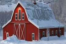 barns that delight and calm