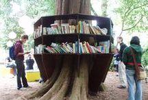 Bookstores/Libraries/ Bookshelves