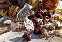 autumns best II