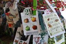 garden advent calendar / enjoying the garden for the holidays