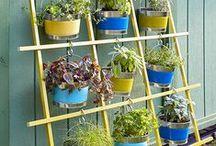 Bağ-Bahçe/Gardening