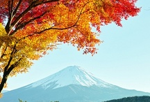 Alluring Japan / <3 <3 <3  / by Judit Solans
