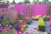 Inspiration - The Garden