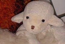 Lasketaan lampaita - sheep / Lampaita ja lampaita...