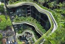 Zielone dachy... Green roofs