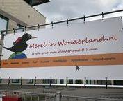 The story of Merel in Wonderland