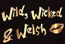 Wild, Wicked & Welsh! / All about Wales!