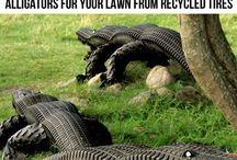 Neumáticos y el Arte de Reciclar / Neumáticos y el arte de reciclar
