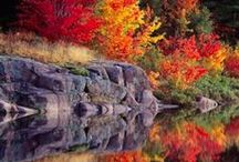 Csodás ősz / Imádom ezeket a színeket, hangulatokat :)