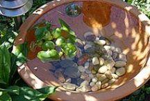 Lilletoya - Garden ideas ! / Ideer til hagen - terrassen - miniatyrhager - inneplanter - fra min og andres.