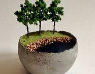 Lilletoya  - Mini gardens ! / Små søte haver i potter inne og ute.