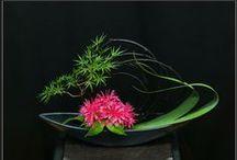 Lilletoya - Ikebana ideas !