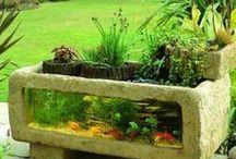 Lilletoya - Water in the garden.