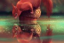 Lilletoya - Colourful Cute Animals.