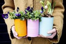 Gardening Projects & Ideas / All your gardening DIY projects & ideas in one place. / by Miracle-Gro