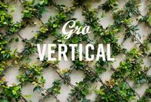 Vertical Gardens / Think outside the pot and explore new growing territory with vertical gardening. / by Miracle-Gro