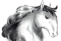 Chara design : Le cheval c'est trop génial / chara design, horses, ponies, zebras and unicorns