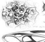 BIOMIMICRY / DESIGN