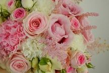 composition florale / composition florale