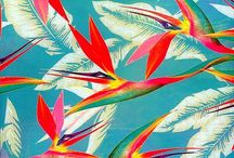 TROPICAL PRINT AND PATTERN / by Amy Sia