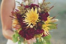 FALL Inspiration / Planning a wedding for the Fall?! Check out some inspiration ideas!!