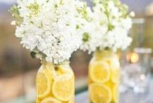 Party Decor / by Tracey Mayhall
