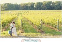 Laurita Winery Weddings / Laurita Winery Weddings by Vanessa Joy Photography