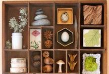 Nature Indoors - Crafts & Decor