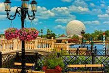 Disney World / by Robin Che