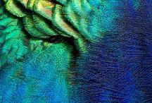 Blauw.....beetje Groen.... / alles waar deze kleuren inzitten