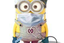 RN / Nursing