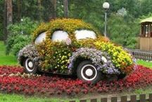Gardening creativity / Gardening ideas