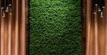 Moss ● Mech
